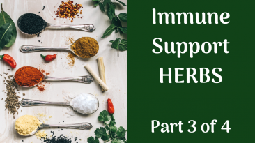 Immune Support Herbs
